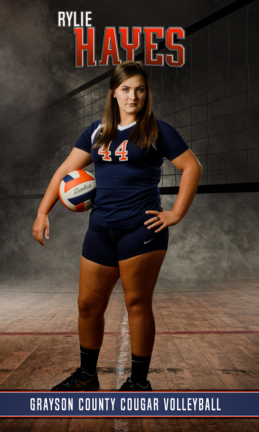 volleyball picture