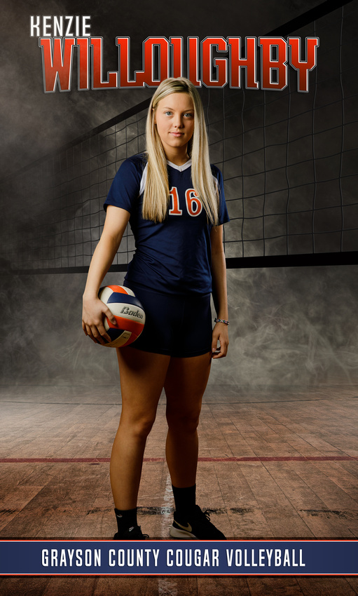 volleyball sports picture